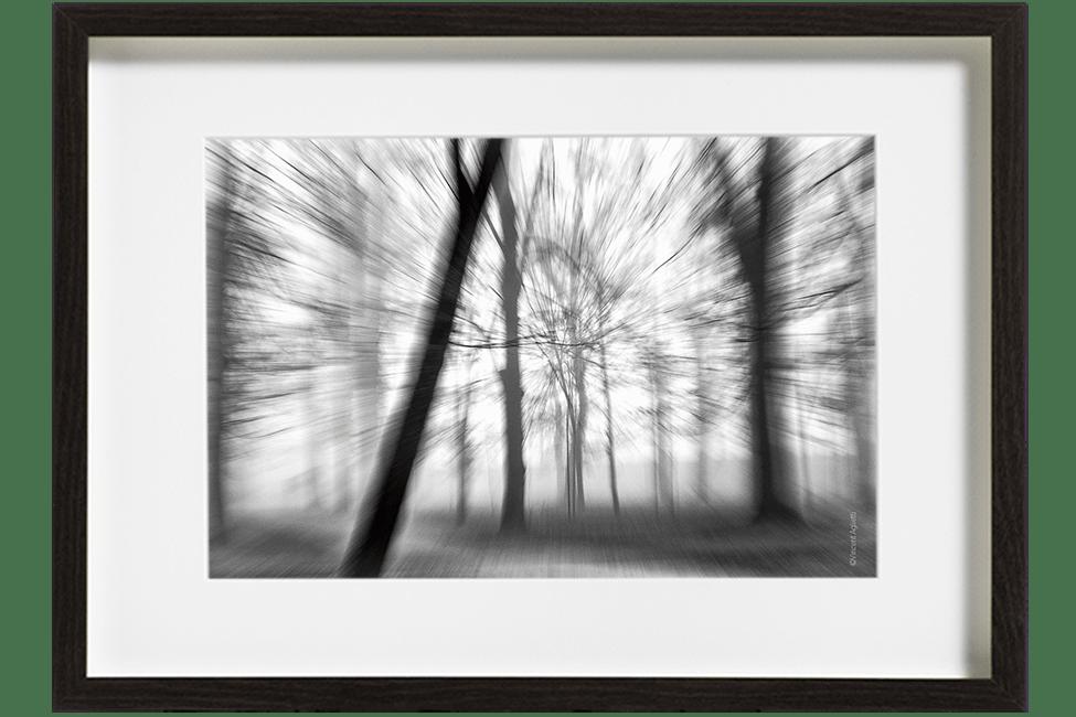 Dans un sous bois des arbres dans la brume donnent un sentiment d'éclatement appuyé par un effet de zooming.