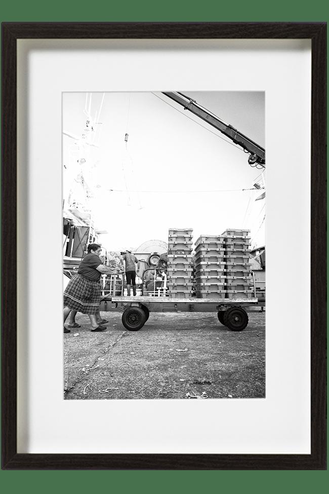 Amélia docker pousse un chariot rempli de caisses de poissons.