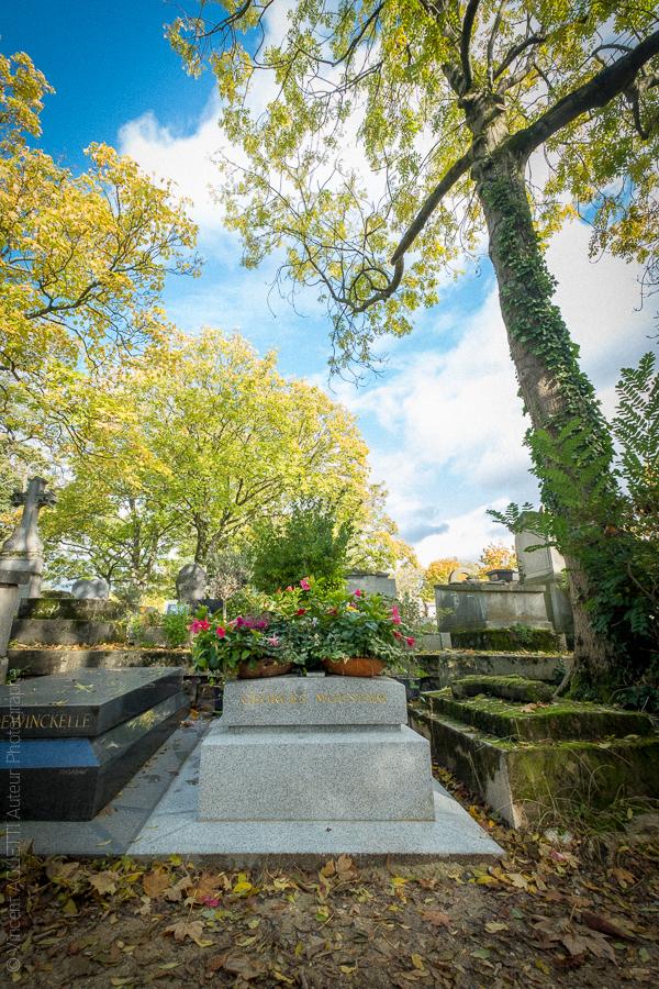 Tombe de Georges Moustaki auprès d'un arbre simulant une croix avec ses branches.