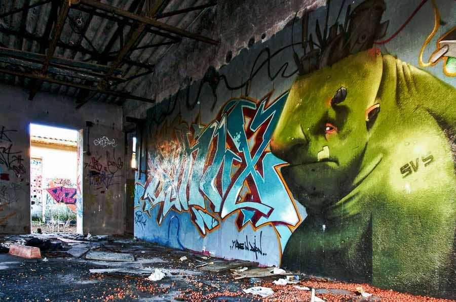 Un ancien bâtiment des tanneries à Dijon. La fresque représente une espèce de Shrek un peu punk.