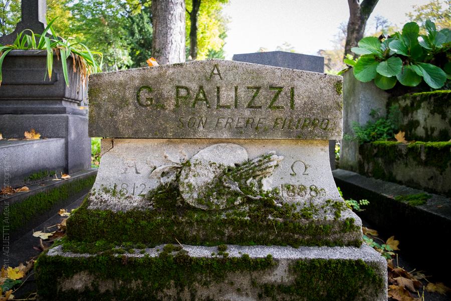 Tombeau de Guiseppe Palizzi peintre néo-romantique italien. cimetière du Père Lachaise