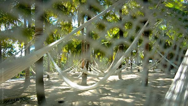 Suite Mexicaine en plein air. Une envie de sieste m'envahit devant ces hamacs accueillants.