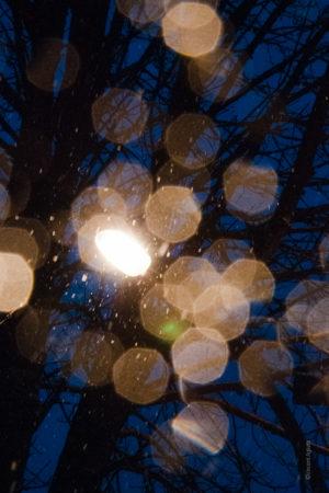 Pendant une chute de neige, un réverbère allumé transforme les flocons en cristaux.