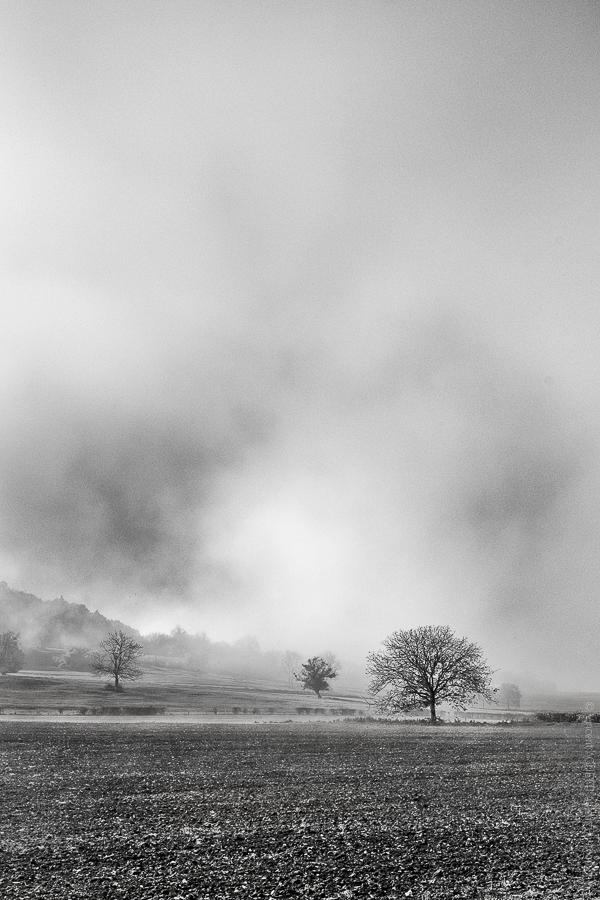 Champs de Brume. Un paysage d'hiver paré de brume.