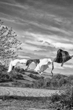 Du Linge dans l'Air. En Alentejo du linge flotte au vent au milieu d'un champ.