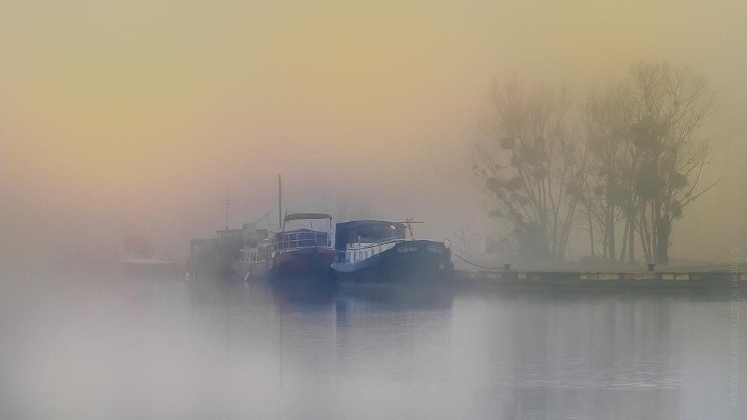 Brume sur le Canal de Bourgogne. Un train de péniches attend sagement dans la brume.
